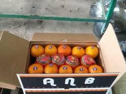 Апельсин,лук,баклажаны,морковь,огурцы,помидоры,перец цветной
