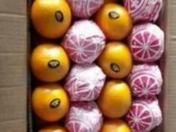 Апельсин Валенсия из Египта