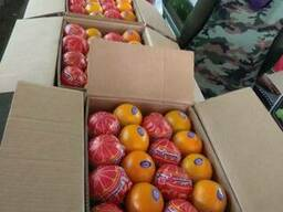 Апельсины Навел - фото 2