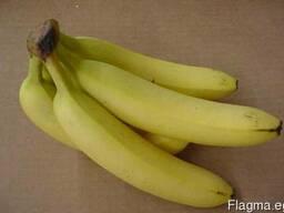 Бананы из Египта