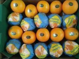 Египтский апельсин