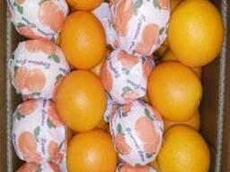 Египтский апельсин - фото 3