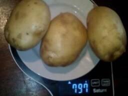 Купим овощи картофель, лук репчатый.