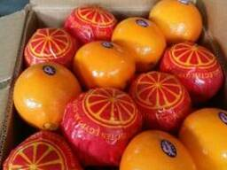 Апельсин из Египта - фото 2