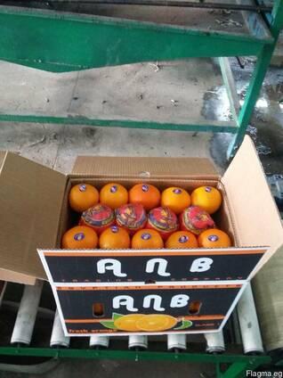 Апельсин, лук, баклажаны, морковь, огурцы, помидоры, перец цветной