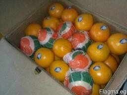 Апельсин Навель
