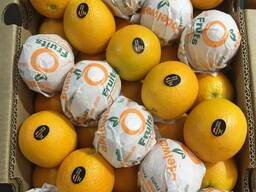 Апельсины Египет, оптом