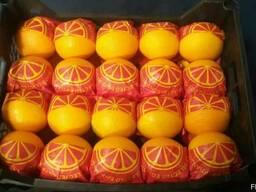 Апельсины Навел