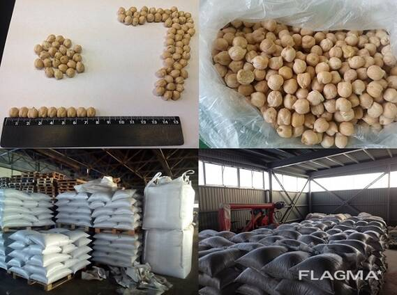 Chickpea 7 mm
