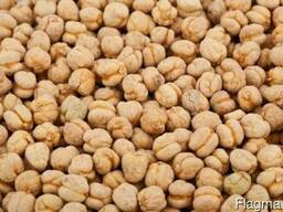Greenfield Incorporation sells Chickpea