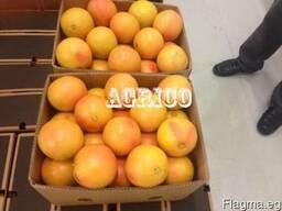 Грейпфруты красные - фото 3
