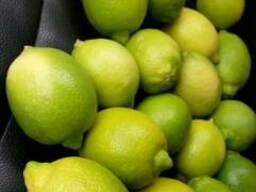 Лимон Адалия